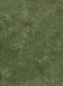 Muslin Backdrop-Green